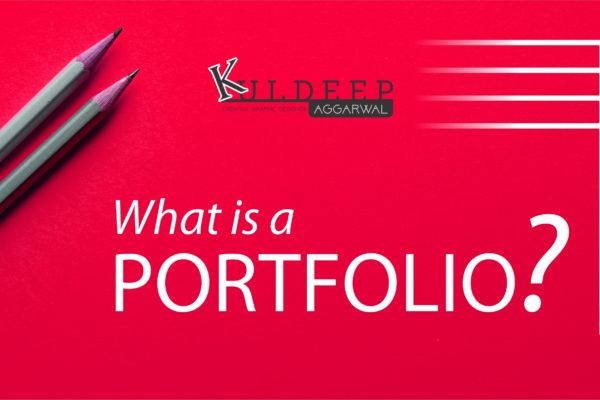 What is a Portfolio | Importance of portfolio